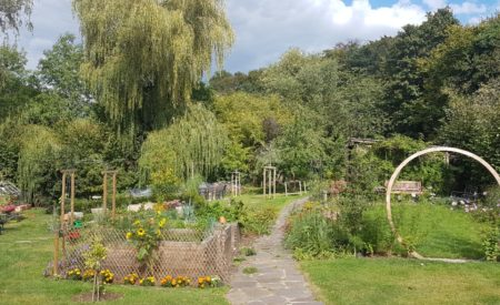 Pflanzung naturnaher Garten Nutzgarten