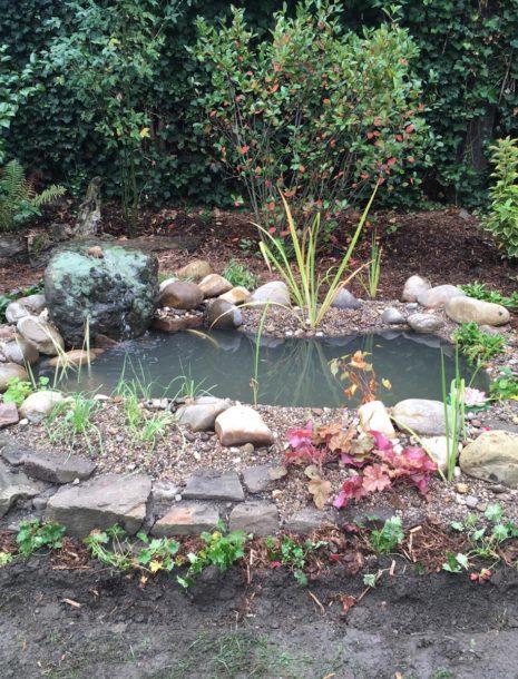 zur fertigen Mini-Teichanlage